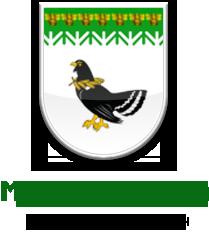 республика марий эл мари-турекский район