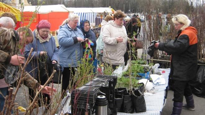 Йошкаролинцев приглашают на сельскохозяйственную ярмарку