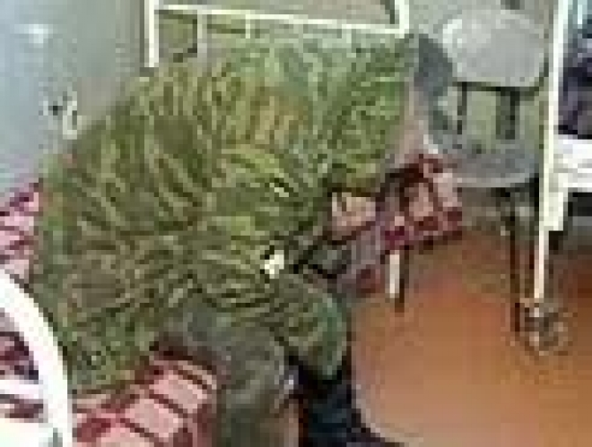 Уроженец Марий Эл с группой военнослужащих самовольно покинул войсковую часть в Калужской области