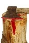 Жительница Марий Эл закопала сожителя в огороде