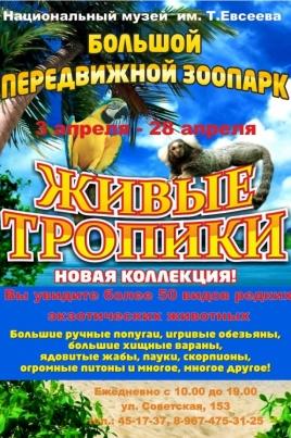 Живые тропики постер