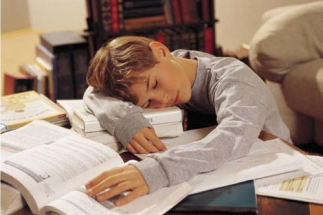 Школьников могут оставить без домашних заданий