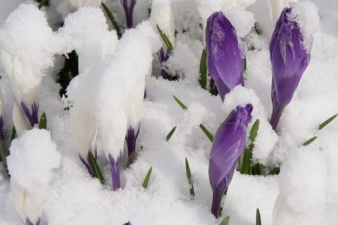 Синоптики не ждут от марта особых сюрпризов
