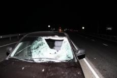 Водитель, по чьей вине погибли два пешехода, четыре года проведет в колонии-поселении