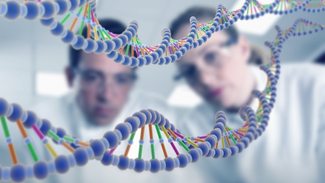 Силовики Марий Эл обзавелись лабораторией ДНК-анализа