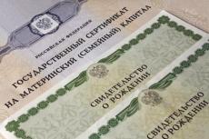Жители Марий Эл не спешат подавать заявление на получение материнского капитала через Интернет