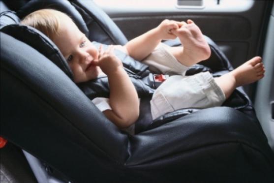 Полицейские проверят автомобили с детьми