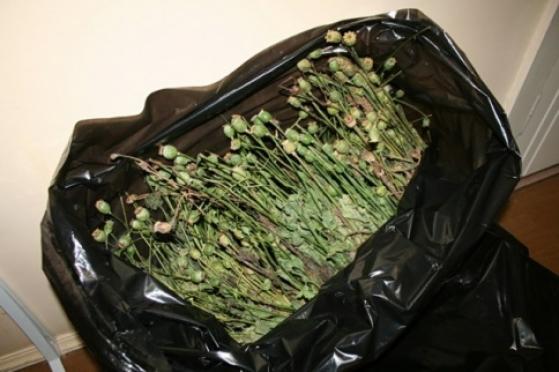 Житель Марий Эл обвиняется в незаконном хранении наркотиков