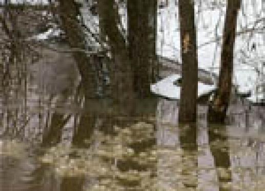 Марий Эл в этом году может ожидать ранний паводок