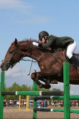 Открытый Чемпионат и Первенство Республики Марий Эл по конному спорту постер