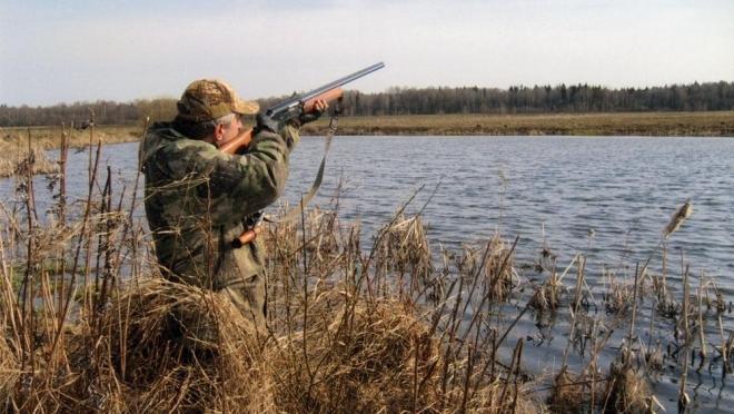 В Марий Эл сезон весенней охоты пройдёт в период максимального половодья