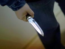 Житель Козьмодемьянска нанес 20 ножевых ранений 16-летней знакомой