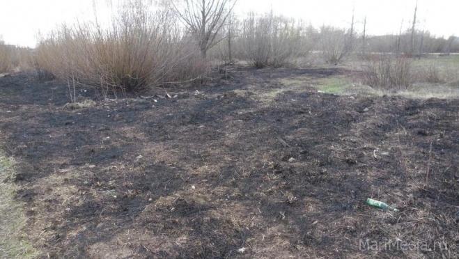 Минприроды РФ вводит запрет на пал сухой травы