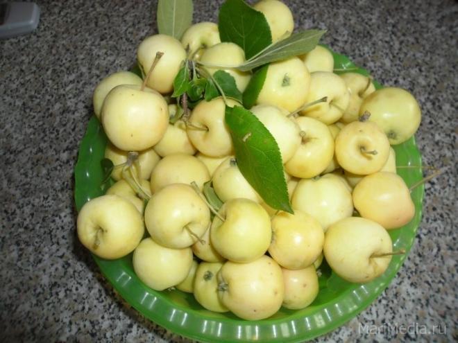 В Йошкар-Оле уничтожили свыше 1 300 килограммов польских яблок