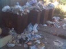 У йошкаролинцев появился шанс отомстить коммунальщикам за переполненные мусорные баки