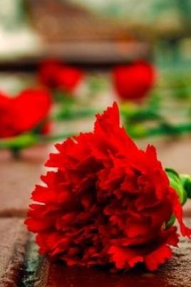 Возложение цветов к Монументу Воинской Славы постер