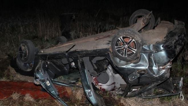 Встреча с лосем на дороге закончилась гибелью человека и животного