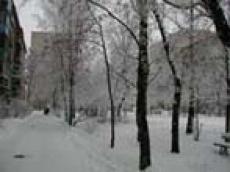 Первая декада февраля в столице Марий Эл будет по-зимнему морозной