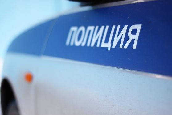 Полицейский «УАЗ» на пешеходном переходе сбил женщину
