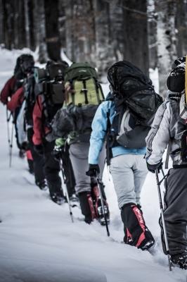 Чемпионат РМЭ по спортивному туризму на лыжных дистанциях