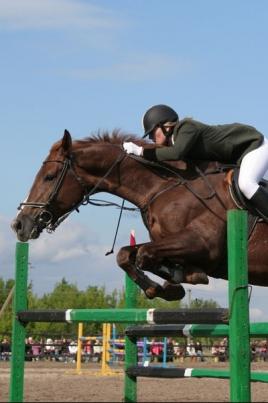 Открытый Кубок РМЭ по конному спорту постер