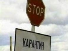 Случай бешенства зафиксирован в Сернурском районе