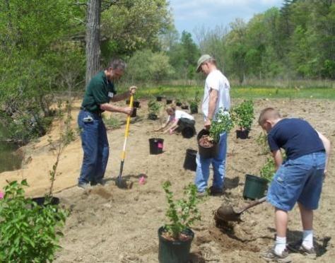 Завтра в Марий Эл стартует проект «Посади дерево — помоги республике»
