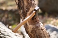 В Мари-Турекском районе поймали «черного» лесоруба
