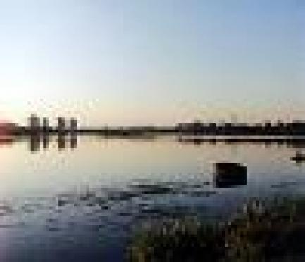 В Нижнем Новгороде обсудили возможность подъема уровня Чебоксарского водохранилища