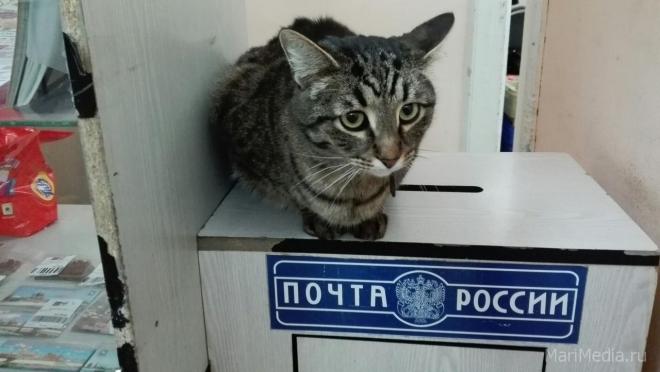 Почтовое отделение № 7 работает по новому графику