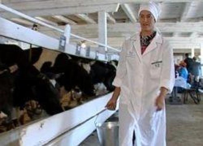 В Марий Эл пройдет конкурс «Деловая женщина - 2012»