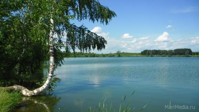 Гидрометцентр —  прогноз на лето