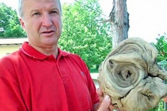 На хорватском кладбище найдена «инопланетная голова»