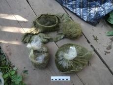 Наркополицейские Марий Эл изъяли очередную крупную партию растительного наркотика