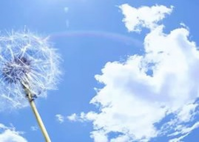 Атмосферный воздух в Марий Эл соответствует всем нормам