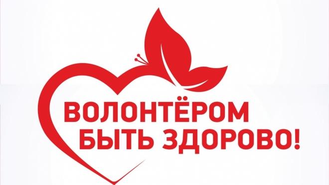 В России 2018 год будет посвящён волонтёрству