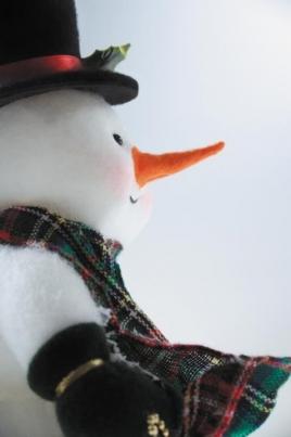 Забавы от Снежинки или День Снеговика постер