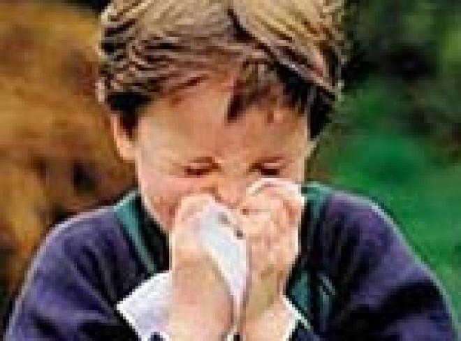 """В Марий Эл - """"детская"""" простудная эпидемия"""