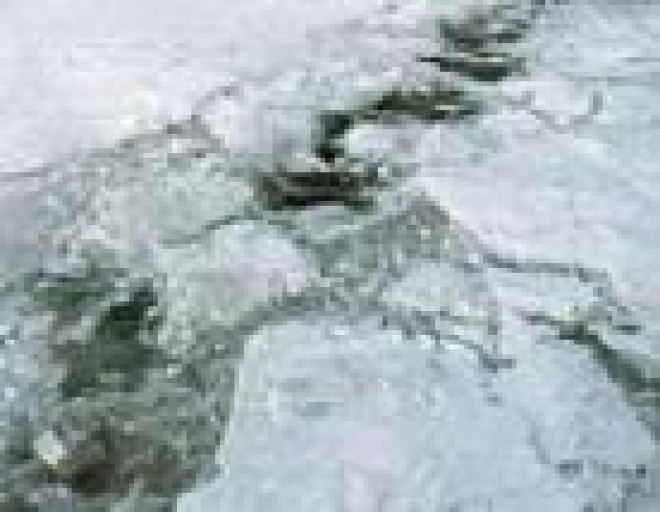 В Марий Эл на водных объектах появились автомобильные ловушки