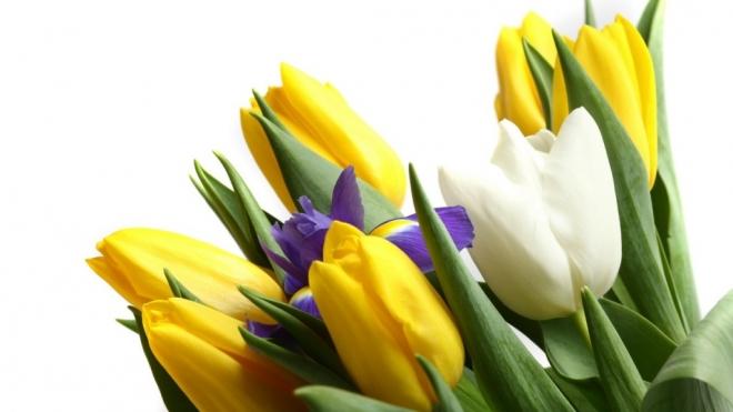 Сотрудники ГИБДД начали поздравлять милых дам с праздником заранее