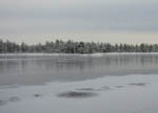 Первая зимняя рыбалка стоила жизни трём жителям Марий Эл