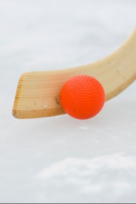 Первенство России по хоккею среди юношей постер