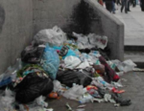 Мэр столицы Марий Эл ответит за городской мусор