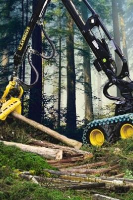 Выставка современной лесозаготовительной и лесохозяйственной техники постер