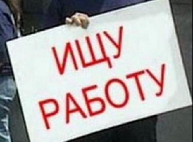 В Марий Эл на борьбу с безработицей брошено более 220 миллионов рублей