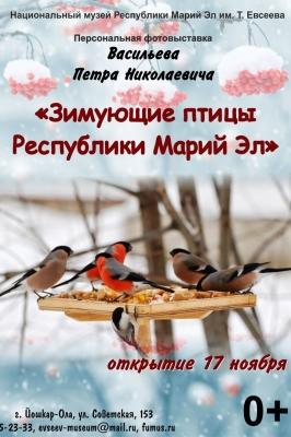 Зимующие птицы Республики Марий Эл