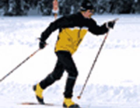 В Марий Эл съедутся лыжники из 12 регионов страны
