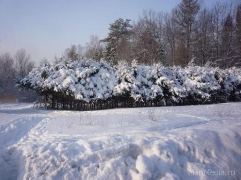 В Марий Эл возвращается зима