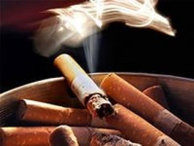 С начала года в Марий Эл произошло 110 пожаров из-за непотушенных сигарет