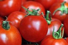 Водитель предприятия пытался похитить более полутонны томатов